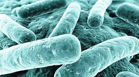 New Clinical Practice Guidelines for Clostridium difficile Infection in Adults and Children
